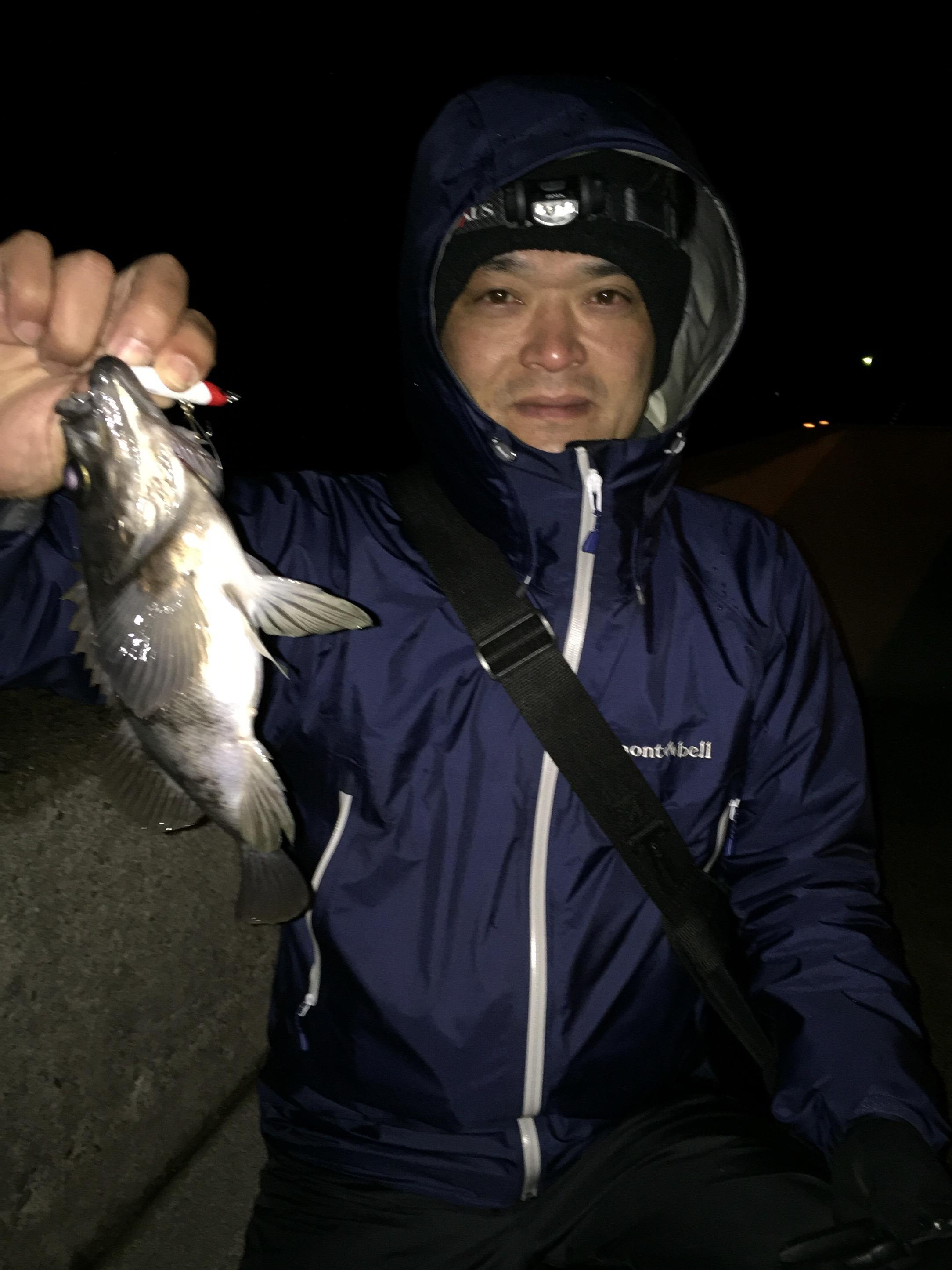 オスカー釣り部、3名での週末釣りレポートの画像
